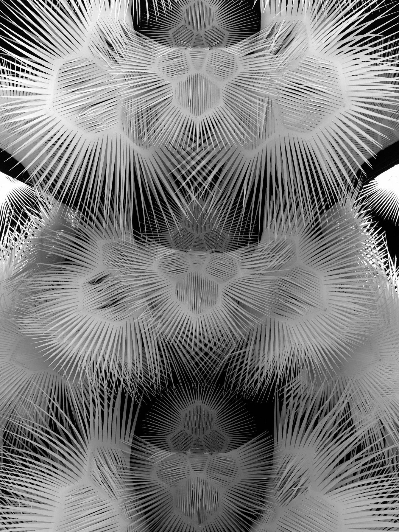 160730 Iris van Herpen122589 var detail shot