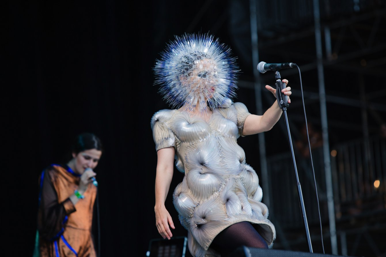 bjork 15 06 2013 bonnaroo 62 danny clinch
